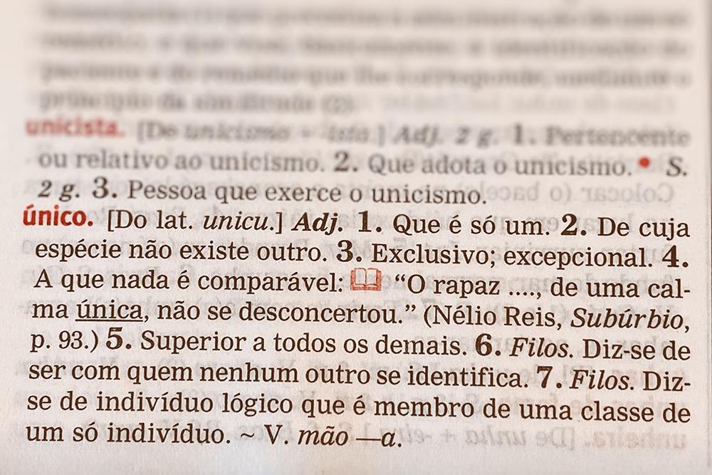 Definição da palavra único no dicionário